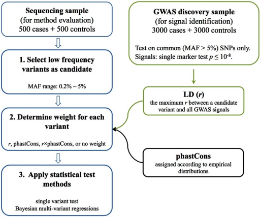 Workflow of the simulation study.Before carrying out these steps, a large pool of haplotypes (n = 15,000) was simulated. Given GRR and MAF of causal variants, cases and controls were simulated by randomly choosing pairs of haplotypes and calculating the risk of each individual to probabilistically assign phenotype.