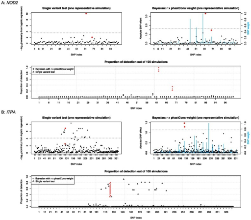 Causal variant detection in the exome sequencing data analysis.(A): NOD2 data; (B): ITPA data. The two top panels are from one replicate of the simulation. For single variant test, SNP effect size was represented by −log10 of p value from logistic regression model; for Bayesian liability model, it was represented by the standardized effect estimated at each SNP. Red dots indicate two causal variants (see Table 1 for more information). Blue vertical bars show values of SNP weights (r × phastCons). The horizontal dashed line indicates effect size at the significance threshold (permutation p value = 0.01). The bottom panel shows proportion of simulations where a variant was detected (i.e., significant at permutation p = 0.01 level). Causal variants are marked in red color.