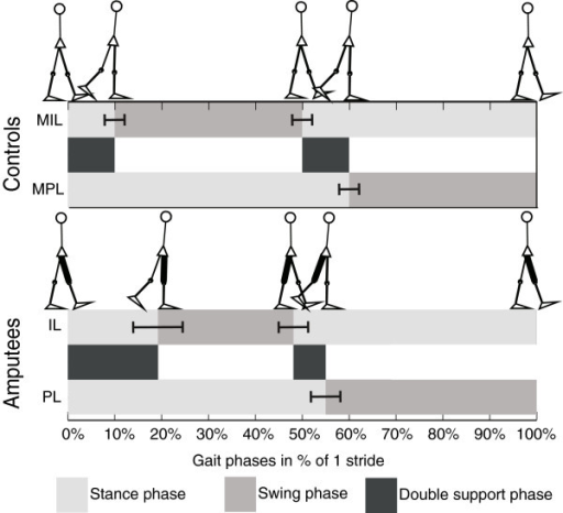 Gait phases. Gait phases for controls and amputees, as percentages of one full stride. In black the swing phase, in light grey the stance phase and in dark grey the double support phases. The whiskers give one SD.