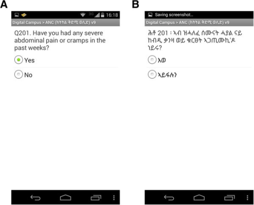 Screenshots of sample question in English (A) and sample question in local language (Tigriyna) (B).