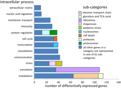The number of differentially expressed genes from all environmental treatments that fell into discrete intracellular process categories.