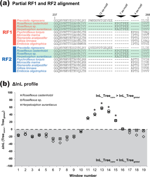 RF1-RF2 gene conversion in the evolution of Chloroflexi.(a). '7 aa-motif' shared between RF1 and RF2 in three members of Chloroflexi. We aligned the RF1 and RF2 sequences of 9 species—six members of Bacteroidetes (Prevotella nigrescens, Psychroflexus torquis, Microscilla marina, Riemerella anatipestifer, Gillisia limnaea, and Emticicia oligotrophica), and three members of Chloroflexi (Roseiflexus castenholzii, Roseiflexus sp., and Herpetosiphon aurantiacus). We here present a portion of the RF1 and RF2 sequences corresponding to amino acid (aa) residues 237–268 in P. nigrescens 12aa_motif-type RF1 (GenBank accession no. EGQ17478.1). The RF1 and RF2 sequences of Roseiflexus spp. and H. aurantiacus are shaded in green. (b). ∆lnL profiles from the sliding window (SW) analyses of three '6-pair' alignments. The details of the alignments were described in the main text. Note that neither 4 aa-motif nor 7 aa-motif was remained in 6-pair alignments. The broken line indicates the estimate of the 0.99th quantile (∆lnLs = −0.1) of the  distribution obtained from the parametric bootstrap analysis. The details of this plot are same as described in the legend of Fig. 3B.