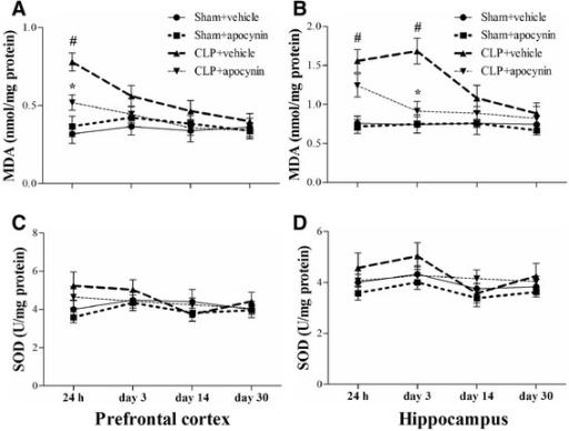 Sepsis-induced oxidative damage was attenuated by apocynin treatment. a, b The MDA level was significantly increased in the PFC (24 h) and hippocampus (24 h and day 3) in the CLP + vehicle group compared with the sham groups. Apocynin treatment significantly decreased the MDA level in the PFC (24 h) and hippocampus (day 3) in the CLP + apocynin group compared with the CLP + vehicle group. There was no significant difference at other time points among the four groups. c, d No significant difference was observed in the SOD activity in the PFC and hippocampus among the four groups. Data are presented as mean ± SEM (n = 6). #p < 0.05 vs the sham groups; *p < 0.05 vs the CLP + vehicle group
