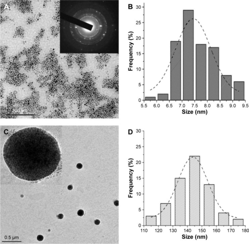 TEM characterization of MnFe2O4 NPs and PEG-b-PCL-MnFe2CO4 NMs.Notes: MnFe2O4 NPs were of spheroidal appearance and narrow size distribution (A) and the average size was 7.6±1.0 nm (B). The diameter of PEG-b-PCL-MnFe2O4 NMs was 146.7±25.9 nm (C and D). Inset of (A) is SAED of MnFe2O4 NPs. Inset of (C) is an enlarged TEM of a single PEG-b-PCL-MnFe2O4 NM; magnification ×200,000.Abbreviations: NMs, nanomicelles; NPs, nanoparticles; PEG-b-PCL, polyethylene glycol-block-poly(ε-caprolactone); SAED, selected area electron diffraction; TEM, transmission electron microscopy.