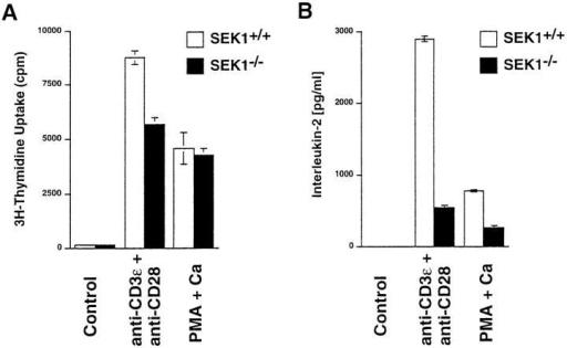 Proliferation (A) and IL-2 production (B) of SEK1−/−  (shaded bars) and SEK1+/+ chimeric (open bars) thymocytes. Thymocytes  (105 T cells/well) were activated with plate-bound anti–CD3-ε (1 μg/ ml) and soluble anti-CD28 Abs (100 ng/ml; CD3-ε + CD28) or PMA  (12.5 ng/ml) plus Ca2+ ionophore (100 ng/ml) (PMA + Ca). Rabbit  anti–hamster Ig-coated plates without addition of anti–CD3-ε/CD28 Abs  are shown as controls. After 48 h of stimulation, proliferation was determined by [3H]thymidine uptake, and IL-2 production was determined by  ELISA. Data of triplicate cultures ± SD are shown. The low IL-2 production of thymocytes after PMA/Ca2+ ionophore stimulation is due the  fact that PMA/Ca2+ ionophore also induces proliferation of  CD4−CD8−TCR− thymocytes, the majority of which does not produce  IL-2. One result representative of three independent experiments is  shown.