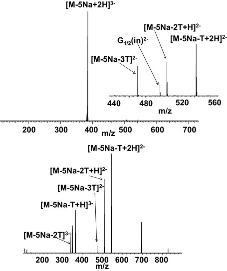 EDD FT-ICR mass spectrum (top) and CID FT-ICR mass spectrum (bottom) of [M − 5Na + 2H]3− ions of PAMAMG0.5COONa.