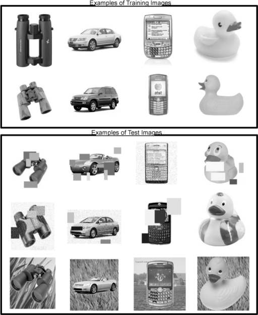 Examples of training and testing images for an HTM network trained for visual object recognition.The top two rows are examples of training images. The bottom three rows are examples of correctly recognized test images. The last row shows test images that incorporated distracter backgrounds.