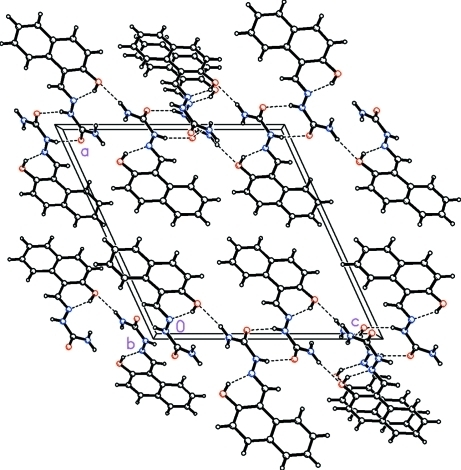 The molecular packing for C12H11N3O2 viewed down the b axis showing the cooperative hydrogen bond network of infinite one–dimensional O—H···O—H···O—H chains along the (1 0 1) plane of the unit cell in a zigzag pattern. Dashed lines indicate intermolecular N—H···O, and intramolecular O–H···N hydrogen bonds.