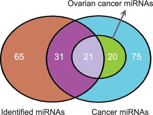 About 44.4% of the miRNAs in identified comodules have previously been reported to be cancer related (hypergeometric test, P=1.1×10−6). Of these, 21 miRNAs were specifically related to ovarian cancers (hypergeometric test, P=7.2×10−6).