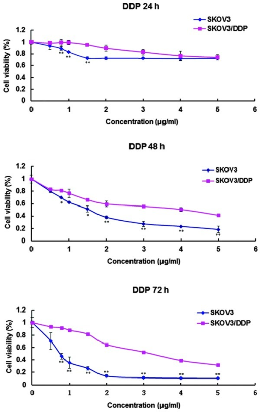 Time- and dose-dependent cytotoxic effect of cisplatin (DDP) on SKOV3 and SKOV3/DDP cells determined using an MTT method. *P<0.05 vs. SKOV3 cells, **P<0.01 vs. SKOV3 cells.