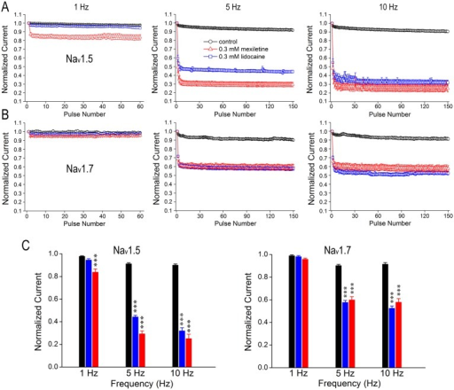 Differential use-dependent inhibition of Nav1.5 and Nav1.7 by mexiletine and lidocaine.Cells were held at -120 mV and pulsed at -20 mV for three different frequencies (1, 5 and 10 Hz), with interpulse potential set at -120 mV. The peak currents elicited by each pulse were normalized to the current of first pulse and were plotted against the pulse number. Black symbols represent control condition without drugs, while red and blue symbols represent experiments in the presence of 0.3 mM mexiletine or 0.3 mM lidocaine, respectively. A and B, Nav1.5 and Nav1.7 were stimulated by a train of 60 pulses at 1 Hz and a train of 150 pulses at 5 Hz or 10 Hz in the presence and absence of 0.3 mM mexiletine or lidocaine, respectively. C, Bar graphs represent the relative amplitudes at the last sweep (60th or 150th) of use-dependent protocol for each frequency. Increasing the number of pulses resulted in current reduction for Nav1.5 in a frequency-dependent manner in the presence of mexiletine or lidocaine at 0.3 mM, whereas mexiletine showed a stronger use-dependent inhibition than lidocaine. In contrast, there is no difference in the inhibition of Nav1.7 at 5- and 10-Hz between mexiletine and lidocaine. Besides, the overall current reduction in Nav1.5 is more prominent than that of Nav1.7 due to the drug effects. Asterisk indicates the significance compared to drug-free (control) condition at each frequency by one-way ANOVA, ***p<0.001.