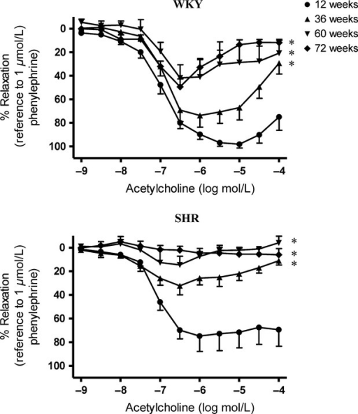 Acetylcholine-induced relaxations of superior mesenteric arteries of (Upper) WKY and (Lower) SHR at various ages in the presence of indomethacin (cyclooxygenase inhibitor; 10−5 mol/L) and L-NAME (nitric oxide synthase inhibitor; 10−4 mol/L). Values are means ± SEM of six to eight experiments. *P < 0.05 compared with corresponding 12-week-old groups.