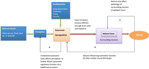 Model of behavioral modulation and seizure generation. The model describes psychological and neural interaction influencing seizure generation.