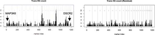 Distribution of trans-hit along the genome. The x-axis represents the genome order of the 1197 markers. The y-axis represents the number of trans-hits in a 5-Mb neighborhood region of each marker. Markers on different chromosomes are separated by vertical gray lines. The left panel is for the original expression data. The right panel is for the residual analysis with respect to 9p13.3. The positions of DSCR2 (21q22.3) and MAP3k6 (1p36.11), which show strong evidence of trans-linkage to 9p13.3 region, are indicated in the left panel.