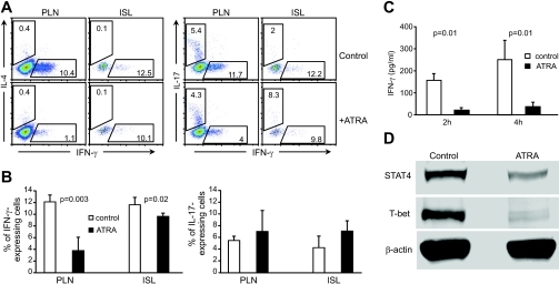 In vivo effects of ATRA treatment on IFN-γ and IL-17 production in T-cells of recipient mice. A: Intracellular staining of CD4+ T-cells with antibodies against IFN-γ, IL-17, or IL-4. Cells were isolated from pancreatic lymph nodes (PLN) or islets (ISL) of diabetic control or diabetes-free ATRA-treated recipient mice 4 weeks after cell transfer and surface-stained with anti-CD4 and then intracellularly stained with antibody for cytokines. Cells were electronically gated on CD4+ T-cells. B: Percentage of cells producing either IFN-γ (left) or IL-17 (right). n = 5. C: ATRA treatment suppresses in vivo production of IFN-γ by T-cells in response to anti-CD3 stimulation, detected by ELISA. Four weeks after adoptive transfer of diabetic NOD mouse splenocytes, diabetic control recipient mice and nondiabetic ATRA-treated recipient mice were intravenously injected with anti-CD3 (n = 3). D: ATRA treatment suppresses T-bet and STAT4 expression in T-cells. T-cells were isolated from the spleen of control or ATRA-treated recipient mice at 4 weeks post–cell transfer. Isolated T-cells were then stimulated with phorbol myristate acetate plus ionomycin. Western blot of cell lysates for T-bet and STAT4 expression (n = 3). (Please see http://dx.doi.org/10.2337/db08-1154 for a high-quality digital representation of this figure.)