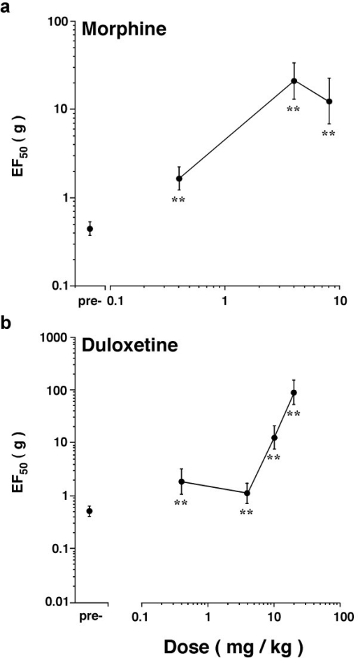 Effects of morphine and duloxetine on EF50s of rats at 8 weeks after ligation of the TASM. The EF50s were below 1 g prior to administration of drugs, indicating the presence of mechanical allodynia. a. Morphine was injected s.c. at 0.4, 4 and 8 mg/kg (1 ml/kg, n = 5 per dose). Morphine produced significant and dose-dependent increases in EF50s tested at 45 min after injection (ANOVA, P < 0.01). b. Duloxetine was injected i.p. at 0.4, 4, 10 and 20 mg/kg (1 ml/kg, n = 5 per dose). Administration of duloxetine produced significant and dose-dependent increases in EF50s tested at 60 min after injection (ANOVA, P < 0.01).