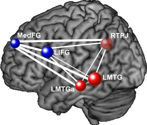 This diagram depicts functional underconnectivity, specifically between frontal and posterior areas, in autism during an inferential text comprehension task. The width of each connecting line represents the t-value of the difference in functional connectivity between the participants with autism and the neurotypical participants. Blue nodes are frontal regions and red nodes are posterior regions. The widest lines (reflecting the greatest group differences) are those connecting frontal and posterior regions. Data from Mason et al. (2008), with permission. MedFG, medial frontal gyrus; LIFG, left inferior frontal gyrus; RTPJ, right temporo-parietal junction; LMTG, left middle temporal gyrus; LMTGa, anterior left middle temporal gyrus.