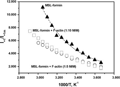 Plots of I+1/I+1m against reciprocal absolute temperature. Filled triangles, MSL–formin; squares, MSL–formin complex with F-actin (1:10 mol/mol); circles, MSL–formin complex with F-actin (1:5 mol/mol)