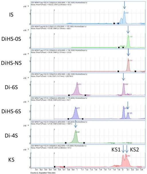 Chromatograms of disaccharides from the rat model with MPS VI (urine)ΔDi-4S comprises DS, and KS comprises KS1 and KS2.