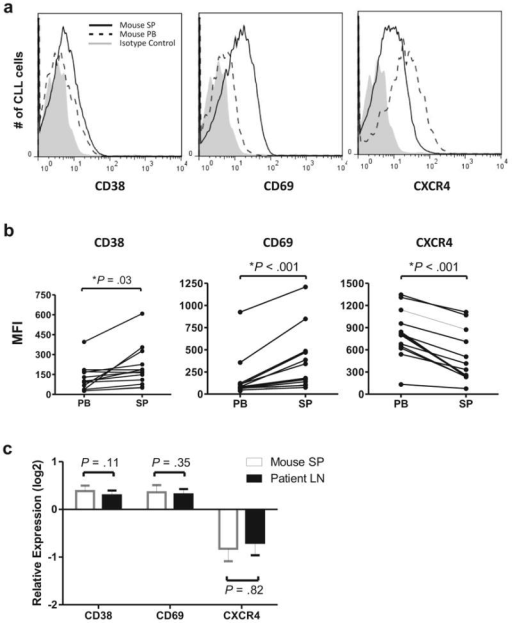 Expression of activation markers on CLL cells is increased in the tissue compartment. (a) Overlay histograms showing mean fluorescent intensity (MFI) for CD38, CD69, and CXCR4 (CD184) on xenografted CLL cells from the mouse spleen (SP) and PB. (b) NSG mice (n=13) injected with PBMCs from six different patients were sacrificed 3–4 weeks post xenografting. Each dot represents a sample from one mouse; lines connect PB and SP samples from the same mouse. (c) CLL cells in the mouse spleen (SP) and human lymph node (LN) upregulate activation markers and downregulate CXCR4 compared to circulating cells in the PB. Shown is the mean (± SEM) of the relative expression for the indicated cell surface markers calculated as the MFI ratio of xenografted CLL cells in mouse SP to mouse PB (open bars) and of CLL cells in human LN to human PB (black bars) obtained from 3 patients. Student's t-test was used to test for significance in all panels.