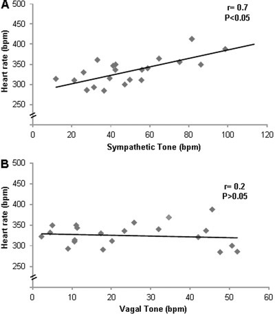 Correlations between A, resting heart rate and sympathetic tone (r=0.7,P<0.05) and B, resting heart rate and vagal tone (r=0.2, P>0.05). Pearson'scorrelation coefficients were determined using data from all hypertensivegroups.