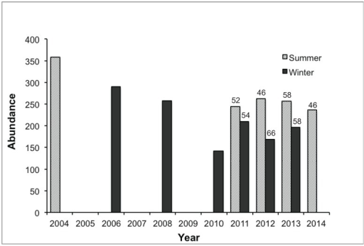 Abundance of Eastern Grey Kangaroos Macropus giganteus at Anglesea Golf Club from surveys conducted in winter and summer, inconsistently at first, from 2004 to 2014. Data for 2004 and 2006 compiled from Inwood et al. [35].