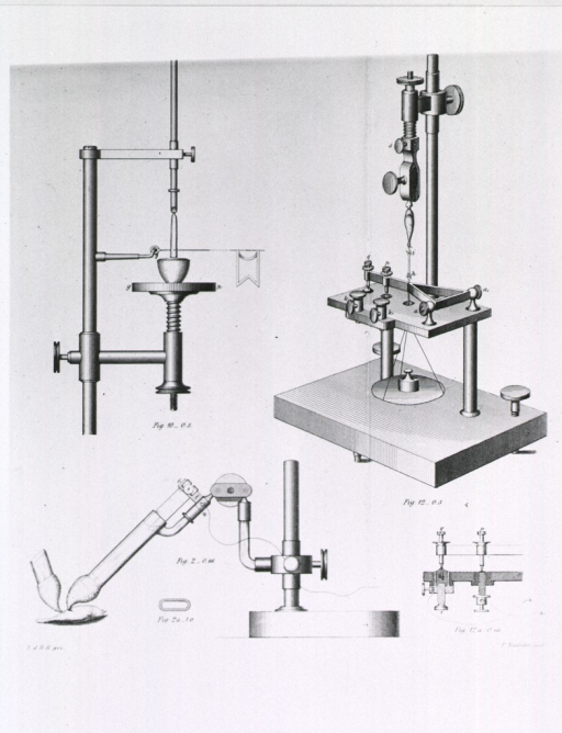 <p>Apparatus set up for electrophysiological experiments (with a muscle?).</p>