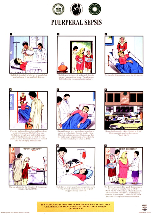 <p>Tan poster with black lettering.  Publisher logos at top of poster.  Title below logos.  Poster features a nine-panel series of illustrations that follow a woman from a difficult delivery through the development and treatment of puerperal sepsis.  Captions for illustrations stress the importance of quick action in treating the infection.  Note and sponsor information at bottom of poster.</p>