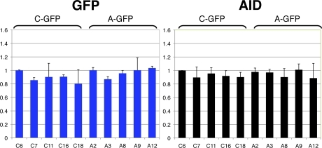 Relative mRNA expression of C-GFP and A-GFP transgenes. Relative mRNA levels among five single-copy clones for eGFP and AID from C-GFP and A-GFP lines were measured by real-time PCR. The data show the mean of three independent experiments. β-Actin mRNA was used to normalize eGFP and AID mRNA levels. The y axis shows mRNA levels relative to clone C6.