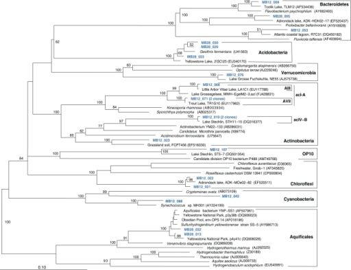 Phylogeny of Mary Bay West 12 and Mary Bay Canyon 28 bacterial clones, except Proteobacteria, based on E. coli 16S rRNA gene nucleotide positions 723–1491.