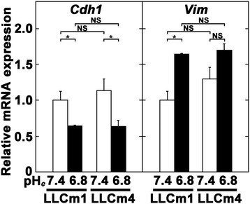 Acidic pHeinducesVim(vimentin) but reducesCdh1(E-cadherin) mRNA expression. Sub-confluent cultures were pretreated with serum-free medium at pH 7.4 and incubated in serum-free medium at pH 6.8 and 7.4. After 24 h, total RNA was extracted, reverse-transcribed, and amplified by qPCR with specific primer pairs. Data are shown as relative expression compared with their levels in LLCm1 cells cultured at pH 7.4. Representative results were shown from three independent experiments. *P < 0.05; NS, not significant.