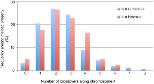 Crossovers are distributed along chromosome 4 during α-α unisexual and a-α bisexual reproduction.Blue bars represent the number of progeny from α-α unisexual reproduction between strains 431α and XL280αSS, while the red bars represent the number of genotypes from a-α bisexual reproduction between strains 431α and XL280a. The 12 progeny from α-α unisexual reproduction, as well as the 2 genotypes from a-α bisexual reproduction that were disomic for chromosome 4 were excluded.