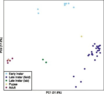 Principal coordinate analysis (based on Bray-Curtis distances) of bacterial communities in C. tarsalis. Bacterial communities in early and late instars, pupae, and adults sampled from outdoor mesocosms, and in laboratory-reared late larval instars of C.tarsalis were significantly separated. Pupae and adults were collected only from high Bti treatment and untreated control (see material and methods for details). Late instar larvae were sampled from all treatments