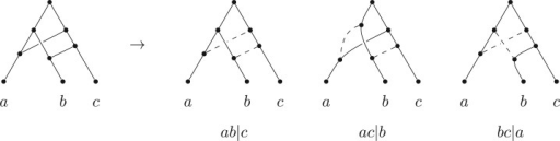 A tree-based network on three leaves in which all possible trees on three leaves could be the base.