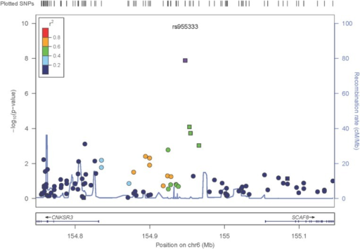 Zoom plot of the SCAF8 gene region (trans-ancestry meta-analysis across Discovery and Replication samples).Squares denote SNPs in the Replication Study, Circles are SNPs that are only present in the GWAS, so the P-values shown reflect the GWAS Trans-Ancestry Meta-Analysis. The Ad-Mixed American population in 1000 Genomes was used for LD information.