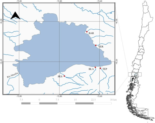 Sampling locations from inlet streams of Lake Llanquihue, Lake District in Chile's northern Patagonia (from north to south and clockwise): Blanco Arenales (BAR), Yerbas Buenas (YER), Tepu (TEP), Blanco (BLA) y Pescado (PES).