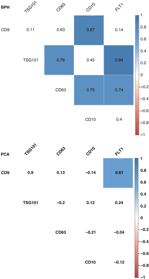 Correlation analysis for uEV proteins from BPH and PCA patients. A correlation matrix was constructed using absolute densitometry values (background subtracted) for each protein. To avoid the loss of data, a value of 0 was given to non-detected proteins. The numbers correspond to r coefficients, and only significant values (p<0.05) are coloured using a proportional colour r-scale (for PCA, n=18 and for BPH, n=9). The values employed to generate the correlation matrix can be found in Supplementary Table XI.