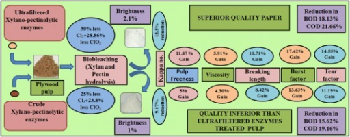 Glimpse of producing superior quality paper from plywood waste using UF xylano-pectinolytic enzymes with reduced generation of pollution