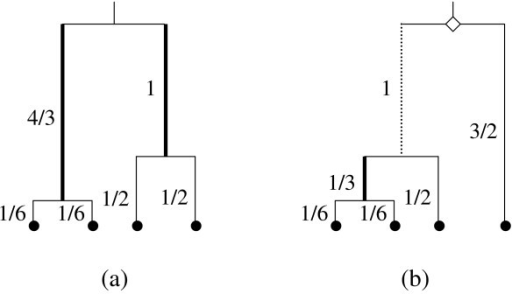 Representative symmetrical (a) and asymmetrical (b) genealogies for four sampled sequences. In all, there are six symmetrical and 12 asymmetrical labeled genealogies for these four sequences [8,45]. This figure illustrates how the shape of a genealogy affects whether a mutation will lead to a singleton or shared polymorphism. This heterogeneity contributes to the variance of θ for the three new methods. This contribution is in addition to the heterogeneity of the genealogical branch lengths and Poisson mutation process [4,5]. The diamond highlights the common ancestor of the (n - 1) basal group of the asymmetrical genealogy. The dotted and thin solid lines mark the basal branch leading to this ancestor and the external branches, respectively, where a mutation will result in a singleton. The thick solid lines denote the other internal branches where a mutation will lead to a shared polymorphism. Expected branch lengths are given in units of scaled coalescent time next to each internode (those of the symmetrical genealogy are specific for its particular labeled history). Although both genealogies have an expected overall length of 11/3, the total length of the internal branches where a shared polymorphism can arise is 7/3 for (a) but only 1/3 for (b).
