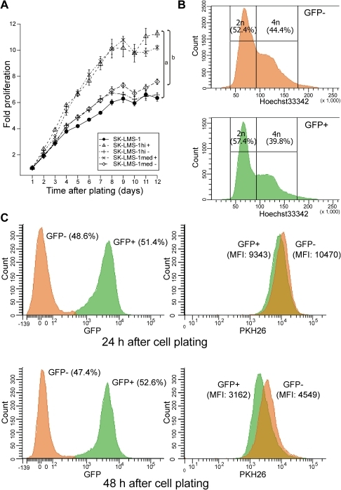 Knockdown of Kaiso in SK-LMS-1 cells accelerates cell proliferation.(A) SK-LMS-1 parental cells and various SK-LMS-1_shKAISO derivative cell populations were subjected to an SRB cell proliferation assay. Cells with medium to high GFP expression levels (med+ and hi+; with stringent Kaiso knockdown) did proliferate more rapidly and reached significantly higher saturation densities than cells with very low GFP expression (hi– and med–; with poor Kaiso knockdown). Values are means ± SD; n = 6. Letters a and b indicate significant differences (p<0.05; Wilcoxon rank sum test): a, SK-LMS-1hi+ vs. parental cells; b, SK-LMS-1hi+ vs. SK-LMS-1hi- cells. (B) Cell cycle profile from unsynchronized SK-LMS-1_shKAISO cell populations with either low GFP expression (GFP–; with poor Kaiso knockdown) or high GFP expression (GFP+, with stringent Kaiso knockdown). Cells were stained with Hoechst33342 and analyzed by flow cytometry to detect 2n/4n DNA contents. In the GFP+ cells, fewer cells (39.8%) contained 4n amounts of DNA than in the GFP– cells (44.4%). Data shown represent one example of four independent experiments. All analyses were performed on subconfluent cell populations. (C) Flow cytometric analysis of cell proliferation by unsynchronized SK-LMS-1_shKAISO cell populations. At time 0, cells were stained with the red fluorescent cell-tracking dye, PKH26, which incorporates into cell membrane lipids and is thus diluted twofold every cell division. At 24 h and at 48 h after plating, cells were first distinguished according to GFP levels (left panels), where cells with high GFP levels (GFP+) show strong Kaiso knockdown. Dead cells were excluded from analysis by positive staining for SytoxRed. Mean PKH26 fluorescence intensity (MFI) was then measured in each subpopulation (right panels), showing that GFP+ cells underwent 1.56 [log2(9343/3162)] cell divisions in 24 h, whereas GFP– cells underwent 1.20 [log2(10470/4549)] cell divisions.