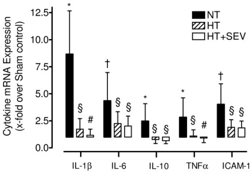 Cerebral cytokine mRNA expression. Transcript levels of the cerebral cytokines interleukin (IL)-1β, IL-6, IL-10, tumor necrosis factor (TNF)α and intercellular adhesion molecule (ICAM)-1 were determined by quantitative RT-PCR. NT, normothermia; HT, hypothermia; HT+SEV, hypothermia combined with sevoflurane. Data are expressed as mean ± SD (x-fold upregulation compared with Sham control). * P < 0.05, † P < 0.01 vs. Sham. §P < 0.05, #P < 0.01 vs. NT. RT-PCR data analysis was performed using two-sided Pair-wise fixed Reallocation Randomisation Test.