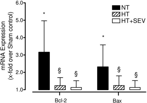 Cerebral Bcl-2 and Bax mRNA expression. Transcript levels of the cerebral apoptosis-associated proteins Bcl-2 and Bax were determined by quantitative RT-PCR. NT, normothermia; HT, hypothermia; HT+SEV, hypothermia combined with sevoflurane. Data are expressed as mean ± SD (x-fold upregulation compared with Sham control). *P < 0.05 vs. Sham. §P < 0.05 vs. NT. RT-PCR data analysis was performed using two-sided Pair-wise fixed Reallocation Randomisation Test.
