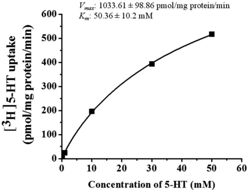 Kinetic analyses of 5-HT uptake in HBVSMCs. Concentration dependence of 5-HT (0.1 μM to 50 mM) uptake was determined by measuring [3H]5-HT uptake at room temperature for 30 min. Values are means ± SEM of three experiments carried out in triplicate.