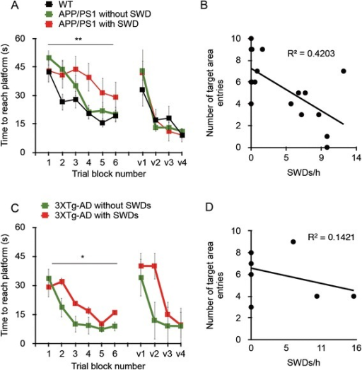Presence of spike-wave discharges correlates with impairments in spatial memory in APP/PS1 and 3xTg-AD mice. Both strains of transgenic mice underwent Morris water maze testing immediately after continuous in vivo electroencephalography recording. (A) and (C) The presence of more than one spike-wave discharge (SWD) worsened the performance of 8- to 10-month-old APP/PS1 mice in the acquisition phase of the Morris water maze (A), and the same was true of 3xTg-AD mice (C) (*P = 0.039 and **P = 0.002 by repeated-measures analysis of variance with post hoc analysis). (B) and (D) A 48-hour probe trial showed an inverse relationship between frequency of SWDs and entries into the target area, defined as the platform area, during a 1-minute trial in APP/PS1 mice (B), but not in 3xTg-AD mice (D) (P = 0.005 and 0.39, respectively; Pearson correlation coefficient). WT: n = 8; APP/PS1 with SWDs: n = 8; APP/PS1 without SWDs: n = 9. 3xTg-AD mice included six females and four males. v1 through v4 indicate visible platform swim trials.