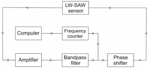 Experimental setup used to characterize the LW-SAW resonator.