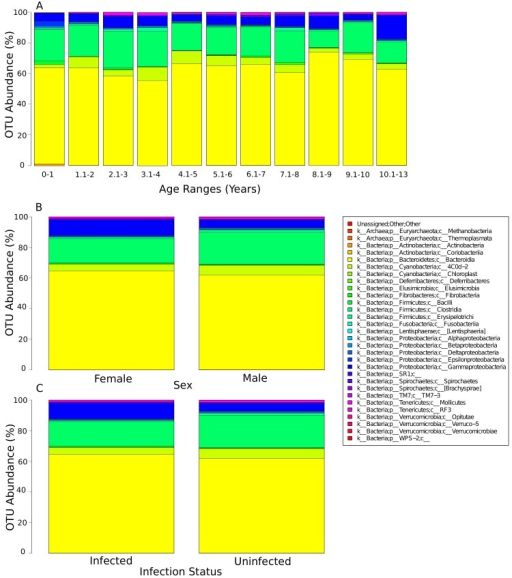 The relative abundance of bacterial classes within the human gut microbiome separated into A) age range, B) sex, C) infection status.