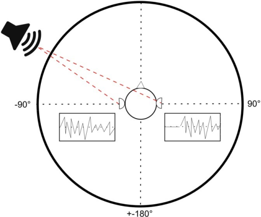 Interaural Temporal Differences.Depending on the position of the source, the emitted sound needs a different amount of time to travel to the individual ears. By estimating this interaural delay, the listener is able to identify the position of the source.
