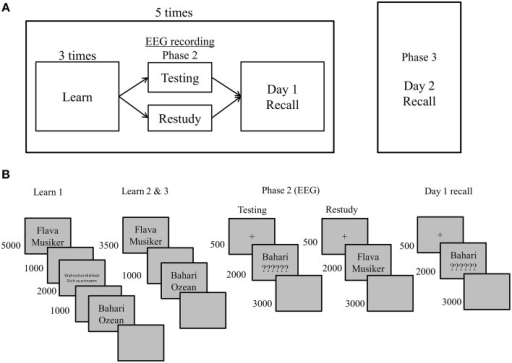(A) Illustration of the procedure realized in each session. (B) Procedure for one cycle on Day 1. Five such cycles each consisting of 22 different items were run on Day 1. The procedure of the final cued recall test on Day 2 was identical to Day 1 recall except for a longer response deadline to 6000 ms and the testing of all 110 items, which is not illustrated in this figure. Note that in Phase 2 (the EEG session) participants did not respond before the offset of the restudy or testing cues which were presented for 2000 ms, respectively.