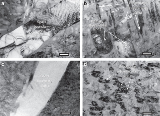 TEM analysis of STA conditions.Bright-field TEM images showing (a) grain boundary α and intragranular α and (b) primary and secondary intragranular α in a STA 1,300-900-2 specimen. Scale bars are 200 nm in both (a–c) grain boundary α and nanoscale secondary intragranular α (scale bar is 200 nm) and (d) high-density nanoscale secondary intragranular α (scale bar is 100 nm) in a STA 1,450-900-2 specimen.