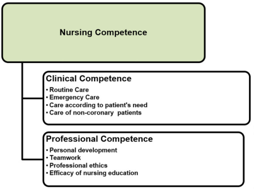 Nurses' competence in Intensive Cardiac Care Unit